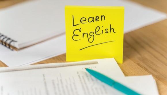 یادگیری زبان برای شغل